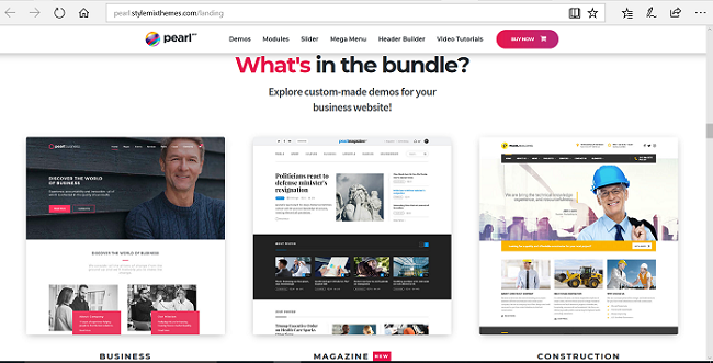 Envato Premium WordPress Themes